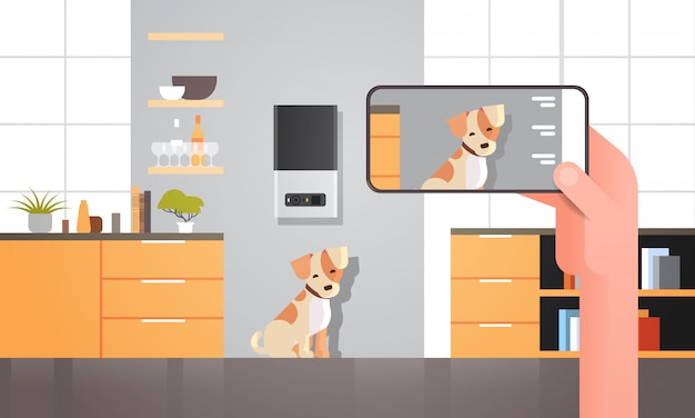 Hand using smartphone controlling automatic digital pet dry food storage ai meal feeder dispenser concept smart animal feed online mobile app modern living room interior horizontal Premium Vector