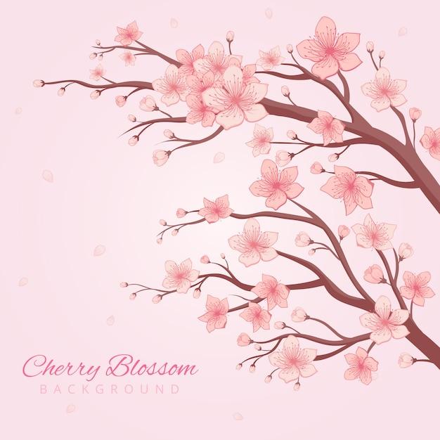 Handdrawn cherry blossom background Premium Vector