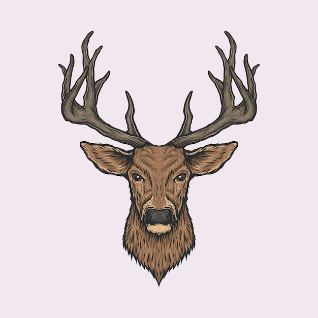 Handdrawn vintage deer head Premium Vector