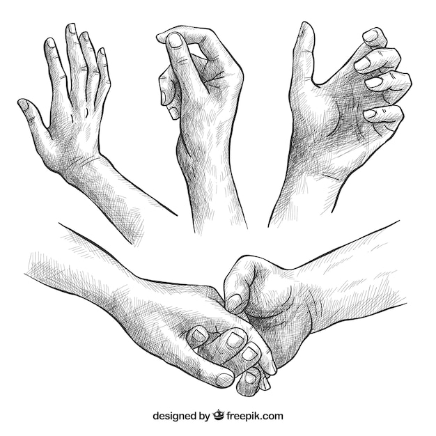 Hands collection with different poses in realistic style Free Vector