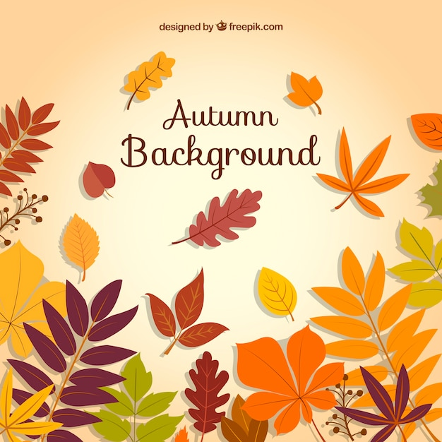 Happy autumn background with variety of leaves