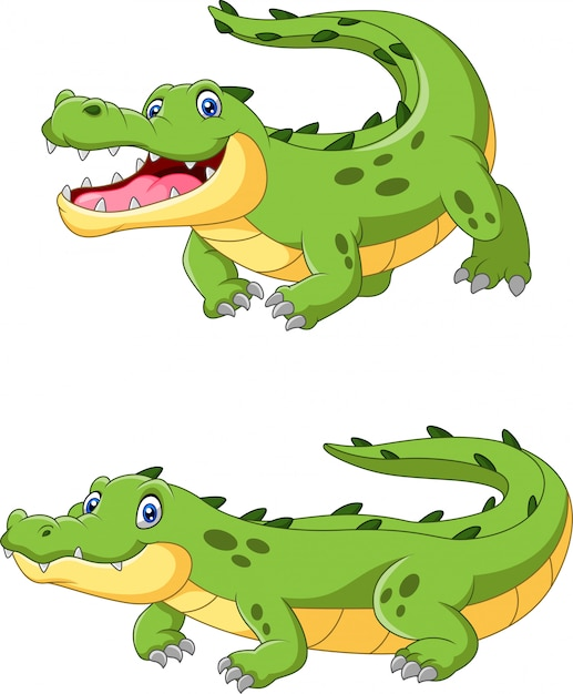 Happy cartoon crocodile are creeping Premium Vector