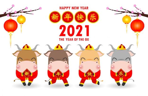 С китайским новым годом 2021, четыре маленьких быка с табличками с китайским золотом Premium векторы