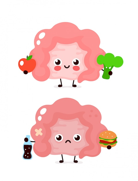 Happy cute smiling healthy with broccoli and apple and sad sick intestine with bottle of soda and burger. vector modern style cartoon character illustration icon design. healthy food,intestine concept Premium Vector