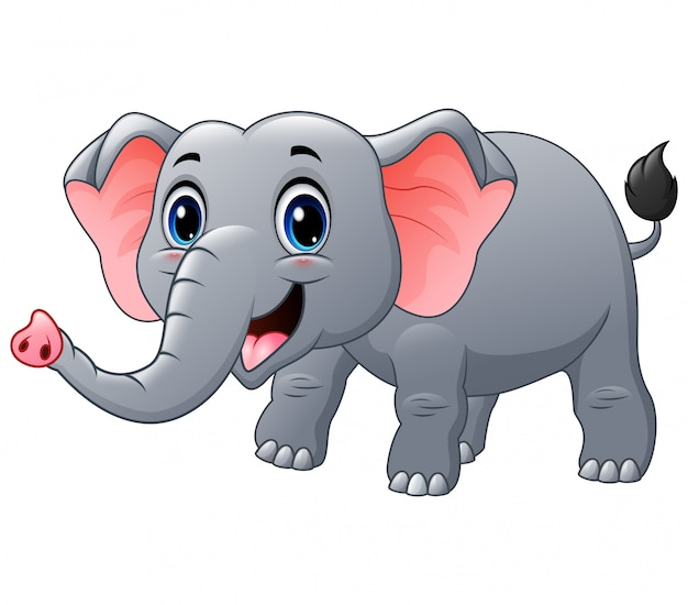 Happy elephant cartoon on a white Premium Vector