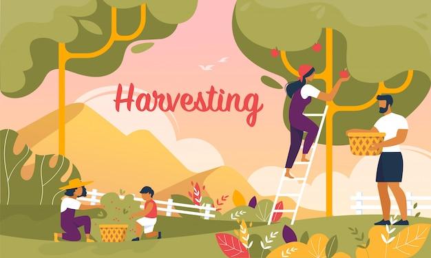 Happy family harvesting in garden banner, summer Premium Vector