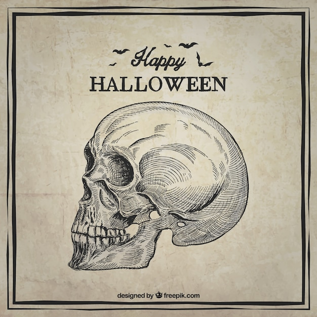 Happy halloween card with a hand drawn skull Free Vector