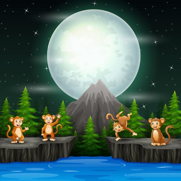 Happy monkeys in night landscape Premium Vector