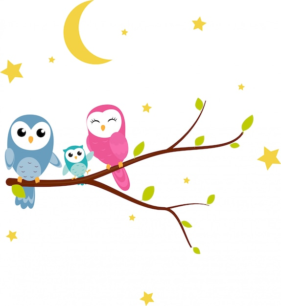 Happy owl background with tree branch Premium Vector