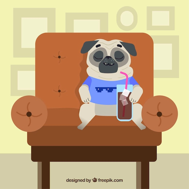 Happy pug resting on the sofa Free Vector