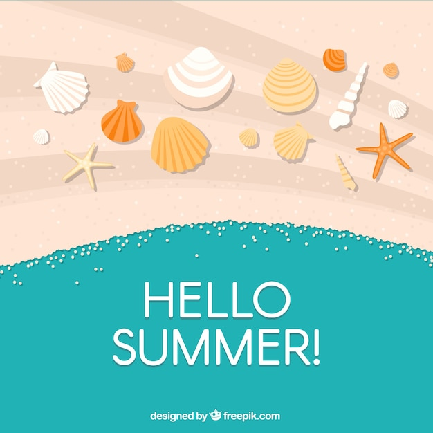 Happy summer background with shells in the\ sand