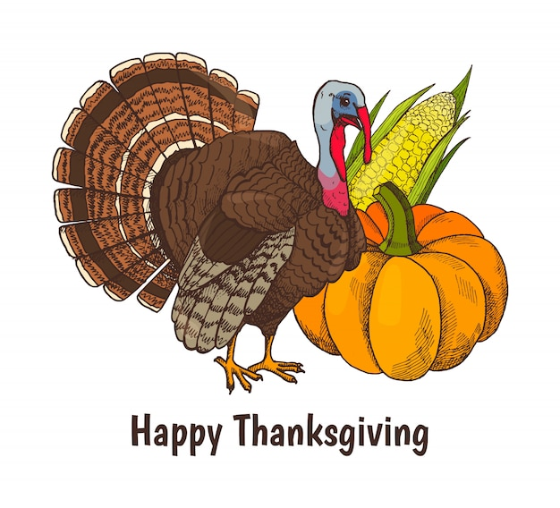 Happy thanksgiving poster turkey animal Premium Vector