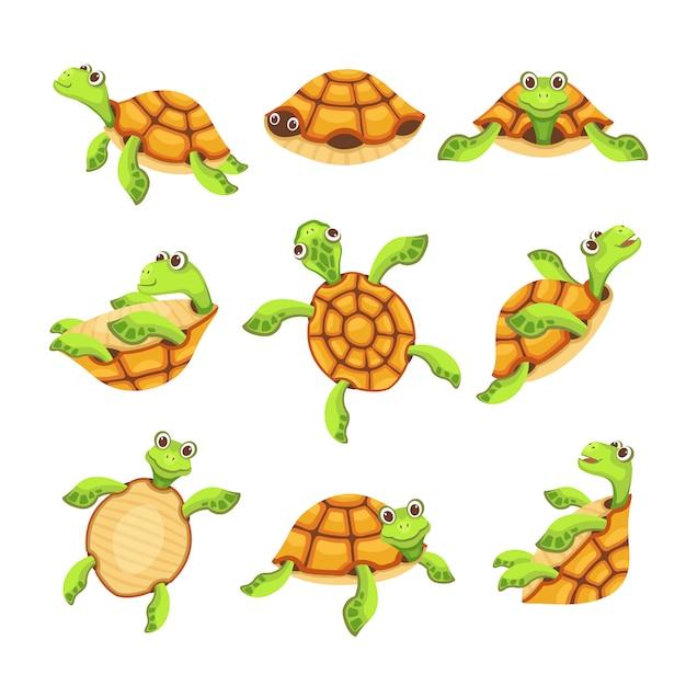 Happy turtle icons set Premium Vector