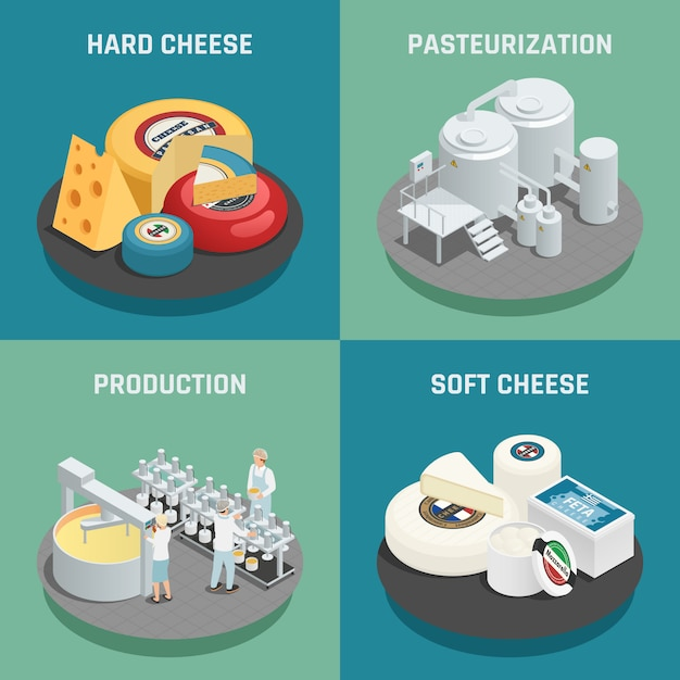 Hard and soft cheese production concept Free Vector