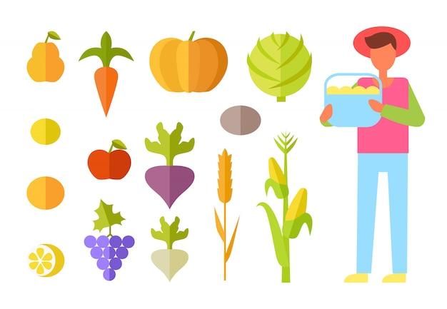 Harvest farmer vegetables set vector illustration Premium Vector