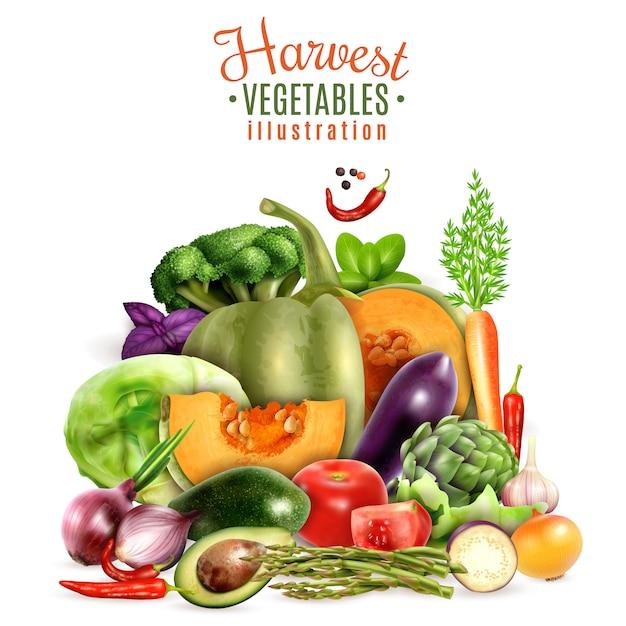 Harvest of vegetables illustration Free Vector