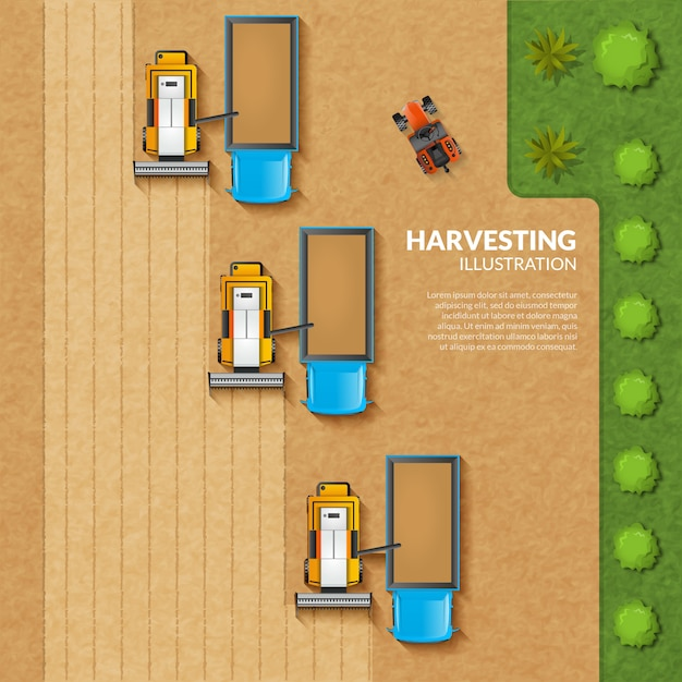 Harvesting top view illustration Free Vector