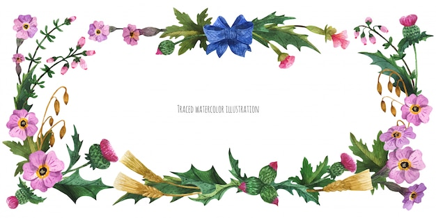 Head banner from plants of scotland with blue silk bow-knot Premium Vector