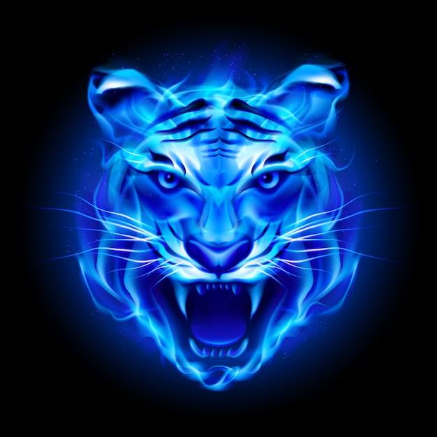 Head of blue fire tiger Premium Vector