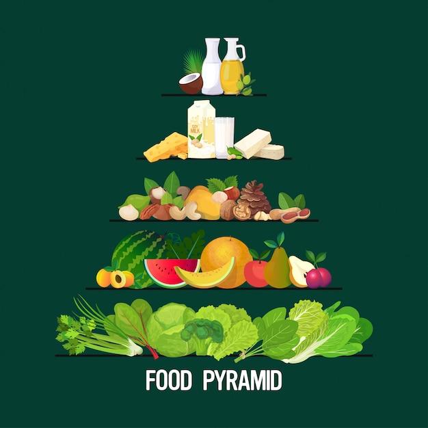 Здоровая пища и питье пирамида здоровое питание диета различные группы органического питания концепция зерновые злаки фрукты овощи молочные травы молоко набор нефтепродуктов Premium векторы