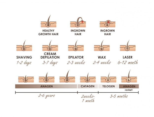 Healthy Growth Hair  Ingrown Hair  Hair Growth Phases  Different Methods Of Hair Removal  Types