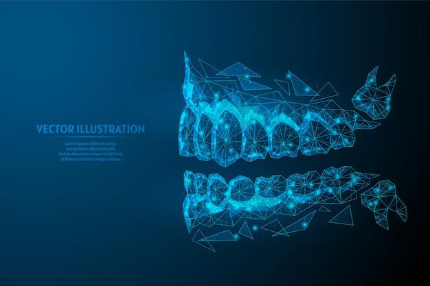 Здоровый человек челюсть, рот крупным планом вид со стороны. правильный прикус, окклюзия, моляр. понятие о стоматологии, ортодонтии, стоматолог, зуб мудрости. низкая поли каркасная иллюстрация 3d. Premium векторы