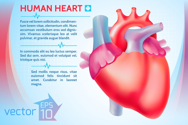 Шаблон здоровой медицины с текстом и красочным человеческим сердцем на световой иллюстрации Бесплатные векторы