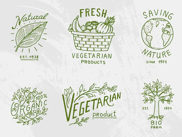 Healthy organic food logos set or labels and elements for vegetarian and farm green natural vegetables products,  illustration. badges healthy life. engraved hand drawn in old sketch. Premium Vector