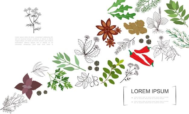 Ботанический шаблон здоровых специй Бесплатные векторы