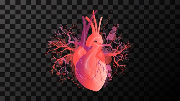 Heart red art illustration vector isolated background Premium Vector