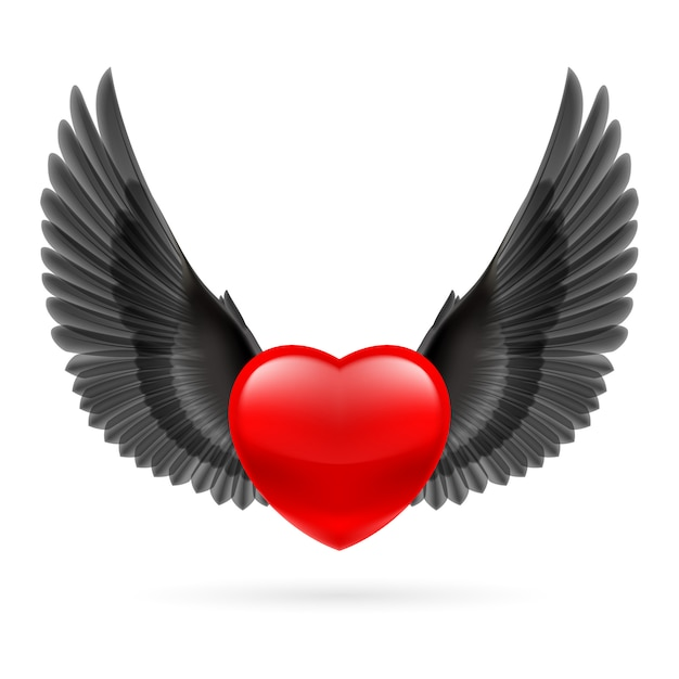 Heart with raised wings Premium Vector