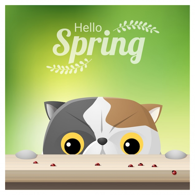Hello spring background with a cat looking at ladybugs Premium Vector