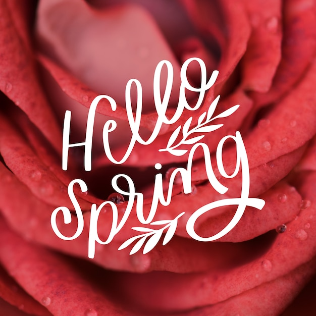 Hello spring lettering with photo Free Vector