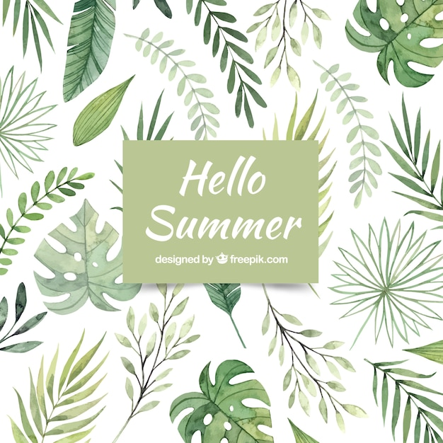 Hello summer background with different plants in watercolor style Free Vector