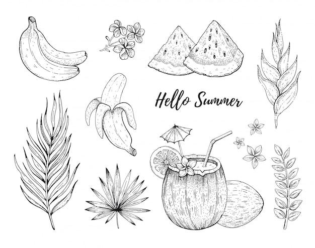 Hello summer тропические фрукты и цветы наклейки Premium векторы