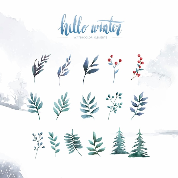 Hello winter plants and flowers painted by watercolor vector Free Vector