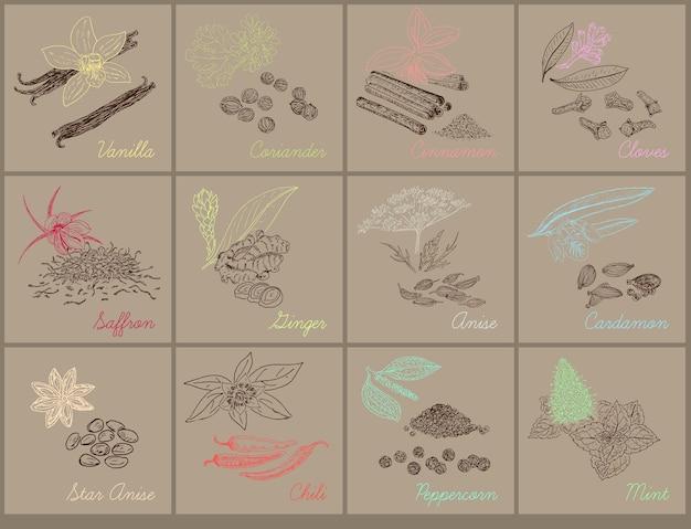 Травяные натуральные ботанические иллюстрации со свежими органическими травами и специями Premium векторы