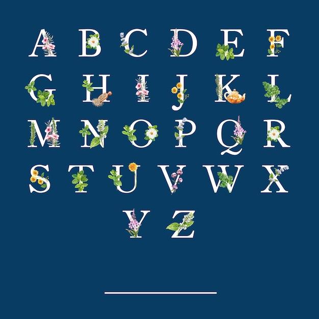 様々なハーブの水彩イラストとハーブティーアルファベット。 無料ベクター