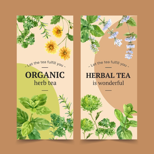 Листовка травяной чай с пикантные, петрушка, мята акварельные иллюстрации. Бесплатные векторы
