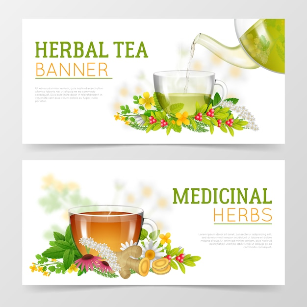 Herbal tea and medicinal herbs banners Free Vector