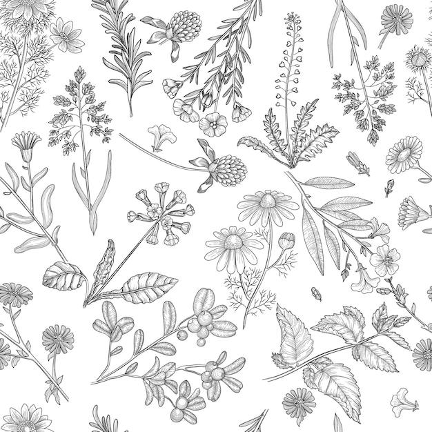 ハーブのパターン。薬用植物の花とハーブの自然のシームレスな背景を抽出します Premiumベクター