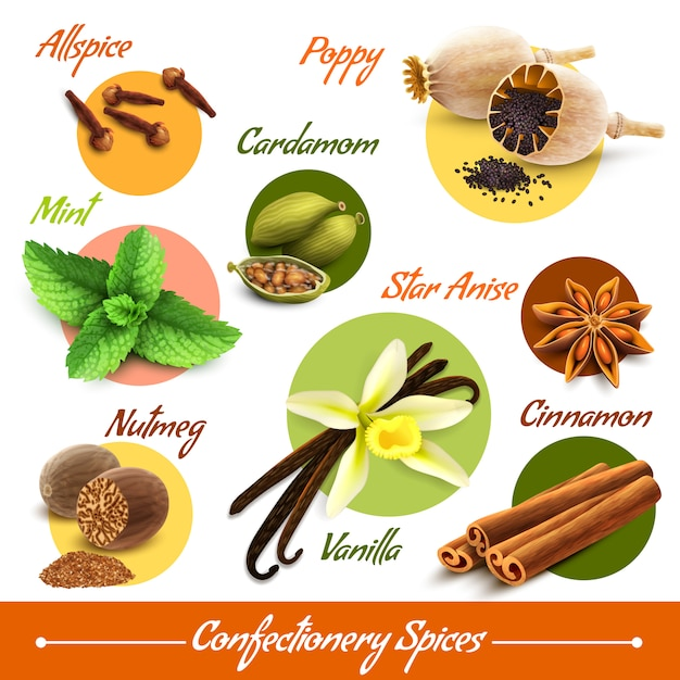 Herbs and spices set Free Vector