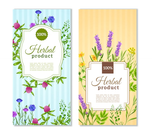 Herbs and wild flowers banners Free Vector