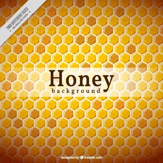 Hexagonal hive background Free Vector
