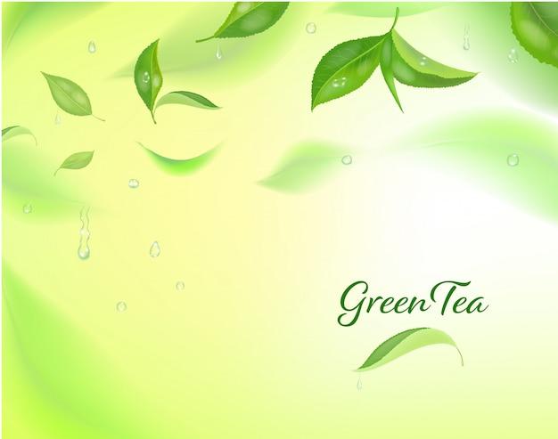 緑茶と高詳細な背景の葉の動き。ぼやけた茶葉。 Premiumベクター