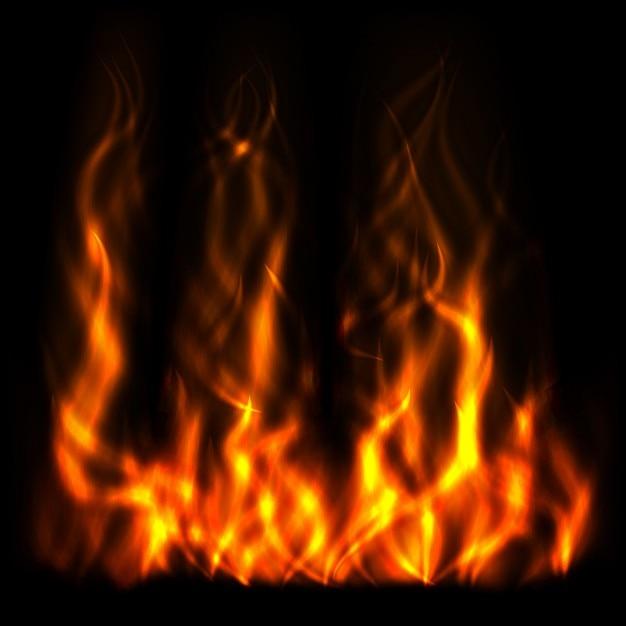 Hight пламя Бесплатные векторы