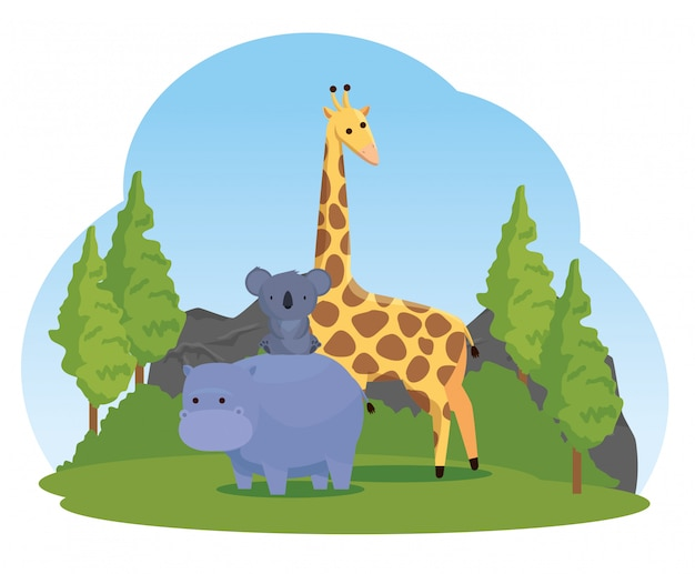 Hippopotamus with koala and giraffe wild animals Free Vector