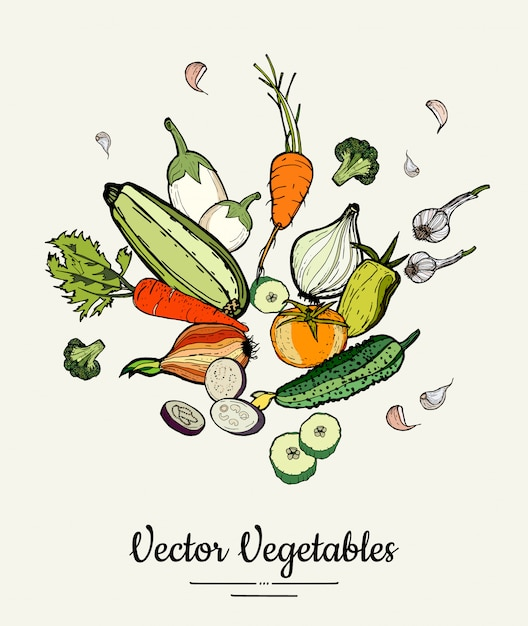 Hipster hand drawn colored vegetables Premium Vector