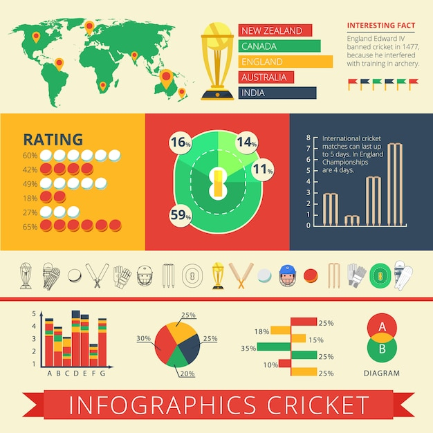Historical background facts and international cricket matches statistics diagrams charts Free Vector