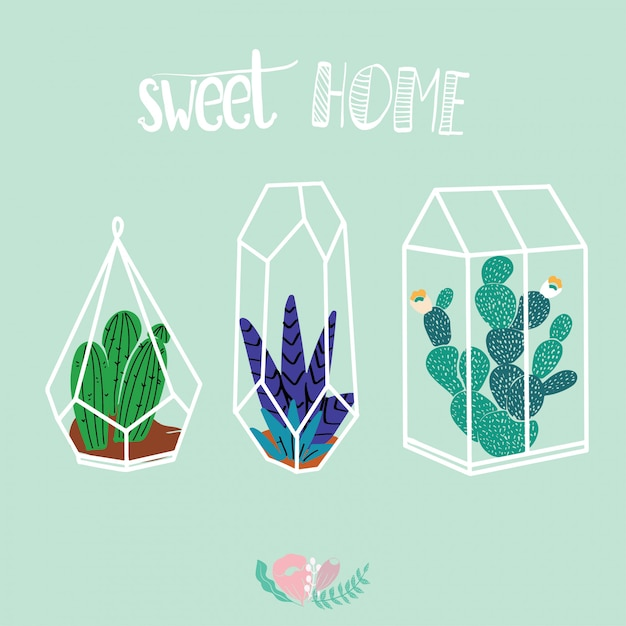 Home decor in modern scandic style. succulents, cactuses and other plants growing Premium Vector